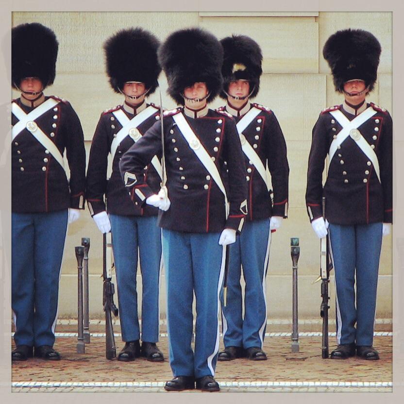 the royal guard delving into denmark